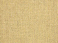 Sunbrella Spectrum Almond | 48082-0000