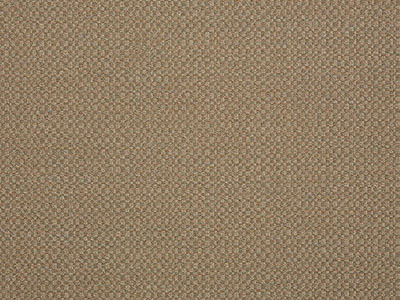 Sunbrella Action Taupe | 44285-0003